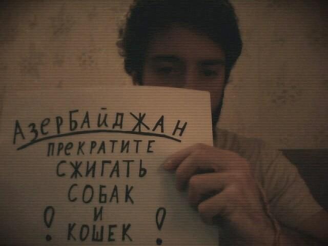 _ZEvXjGPrh4.jpg