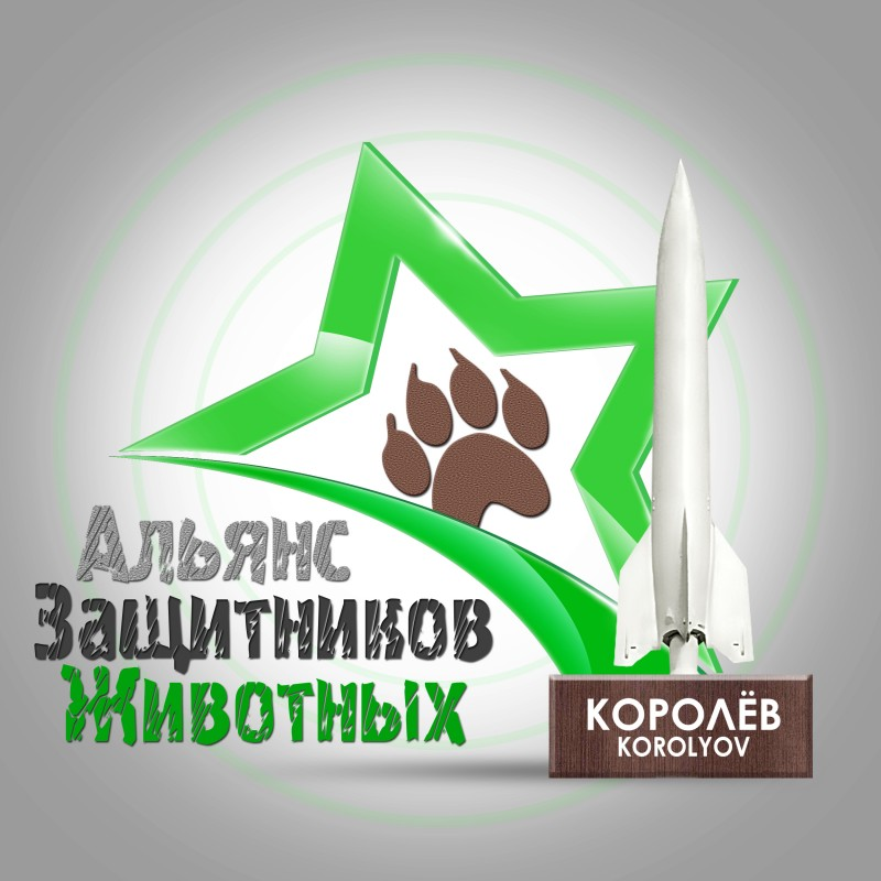 3D-Star-Logo_Korolyov