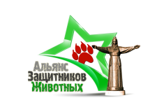 3D-Star-Logo_Che_png