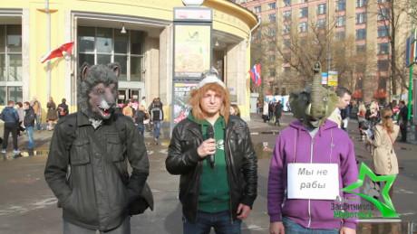 Росгосцирк ответит за животных – 30.04.2013