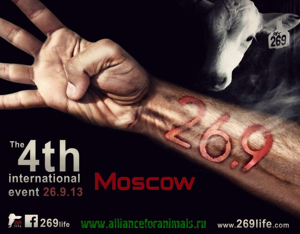 """""""269"""" – 4-й Международный день действий (Анонс)"""