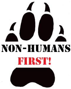 nonhuman