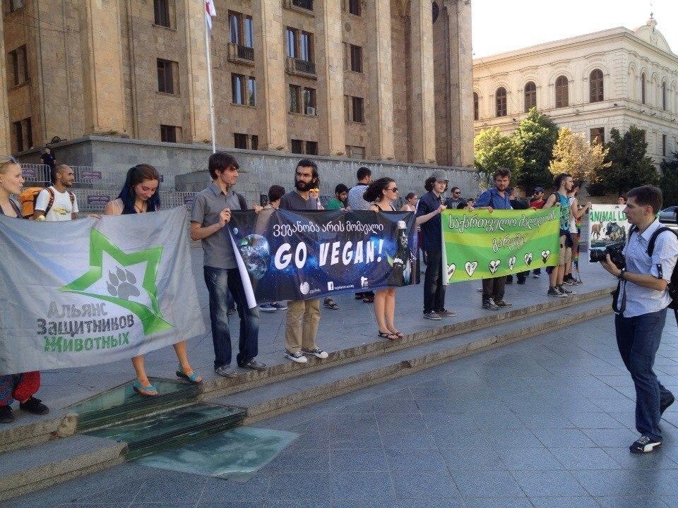 Веган-марш в Тбилиси – 24.07.2014