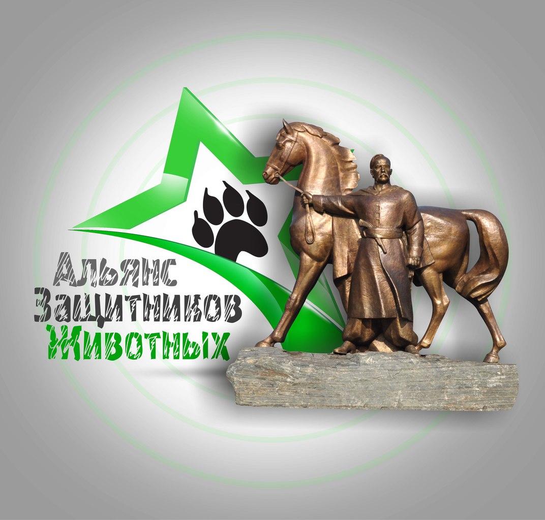 3D-Star-Logo_Che