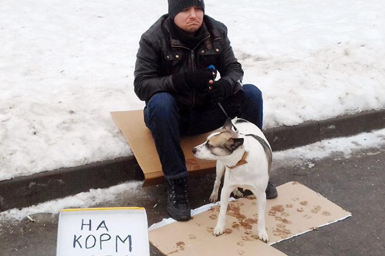 Социальный эксперимент по попрошайкам с животными