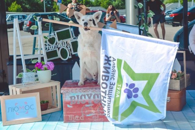 Благотворительный фестиваль помощи животным в Туле 23 и 24 июня 2018 г.