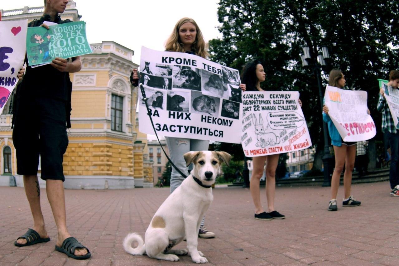 Мы все Земляне – Нижний Новгород 24.08.2013