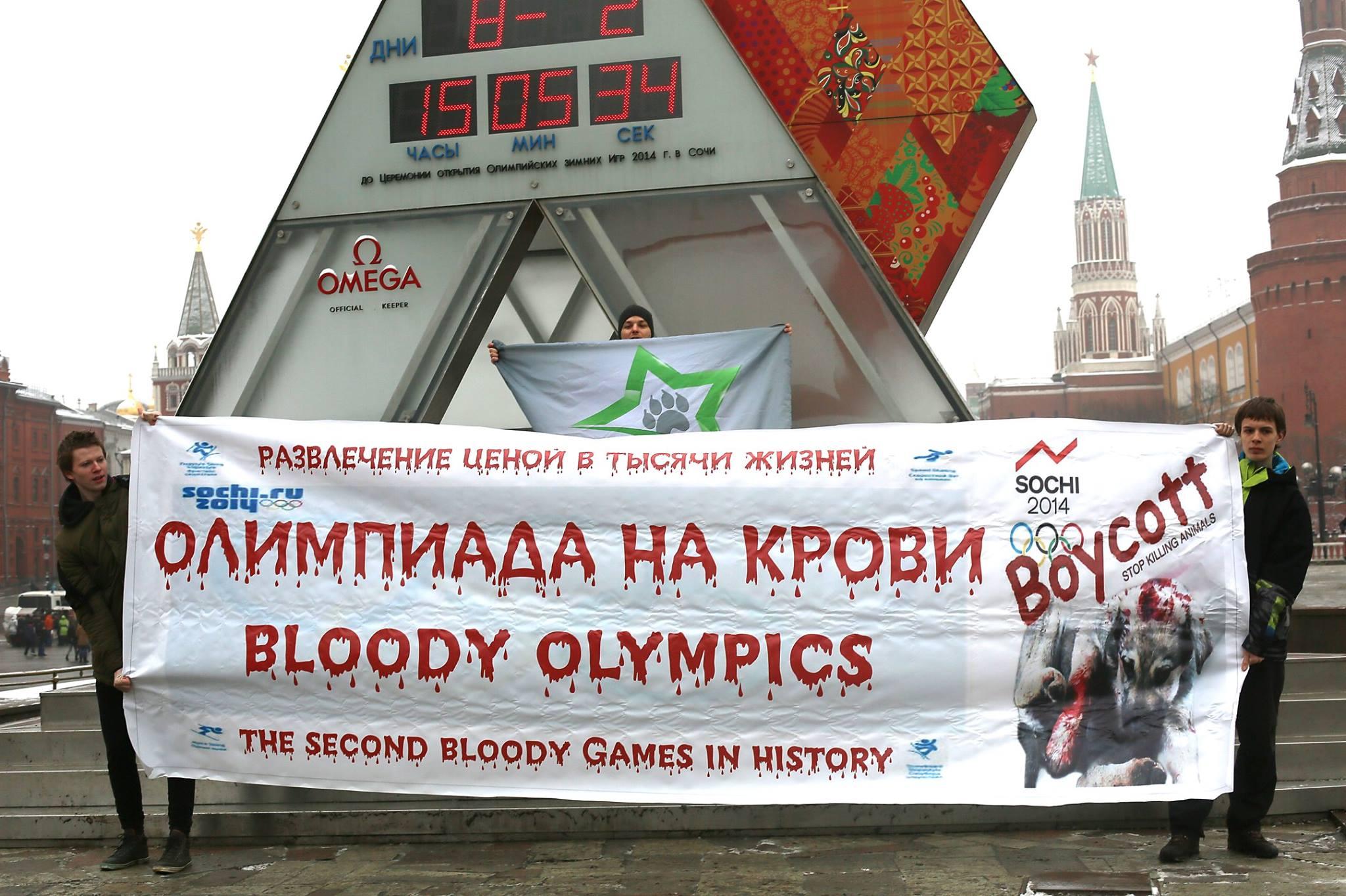 Олимпиада на крови – 08.02.2014