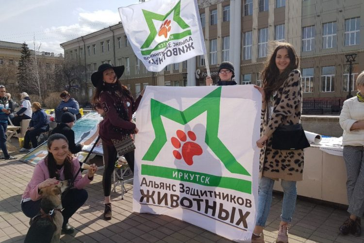 Уроки доброты в Иркутске