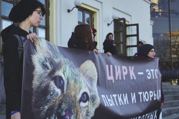 За цирк без животных – 15.04.2017