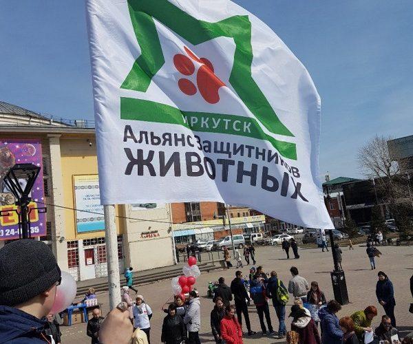 """Всероссийская акция """"Закон нужен сейчас!"""" – апрель 2018"""