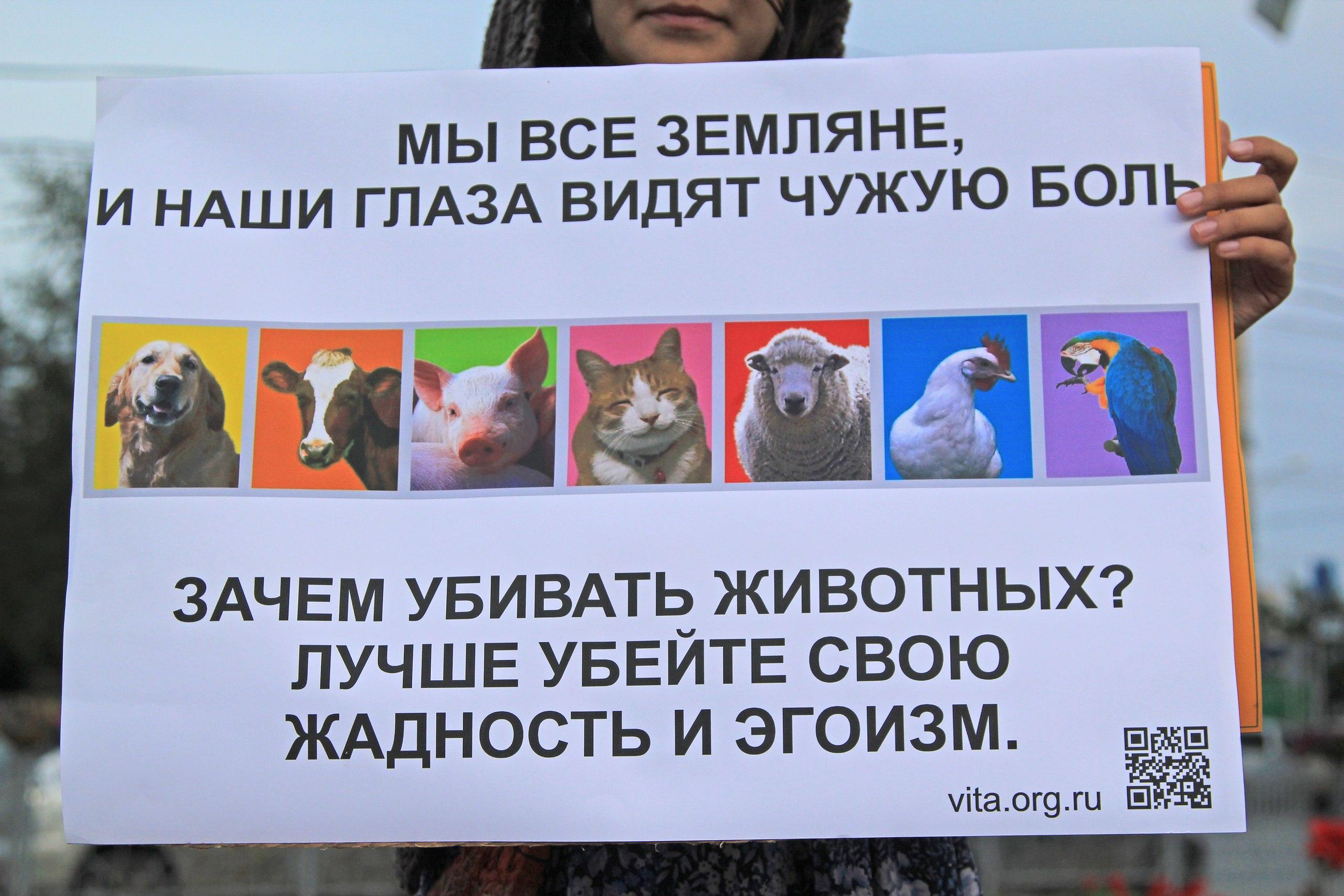 Мы все Земляне – Новосибирск 24.08.2013