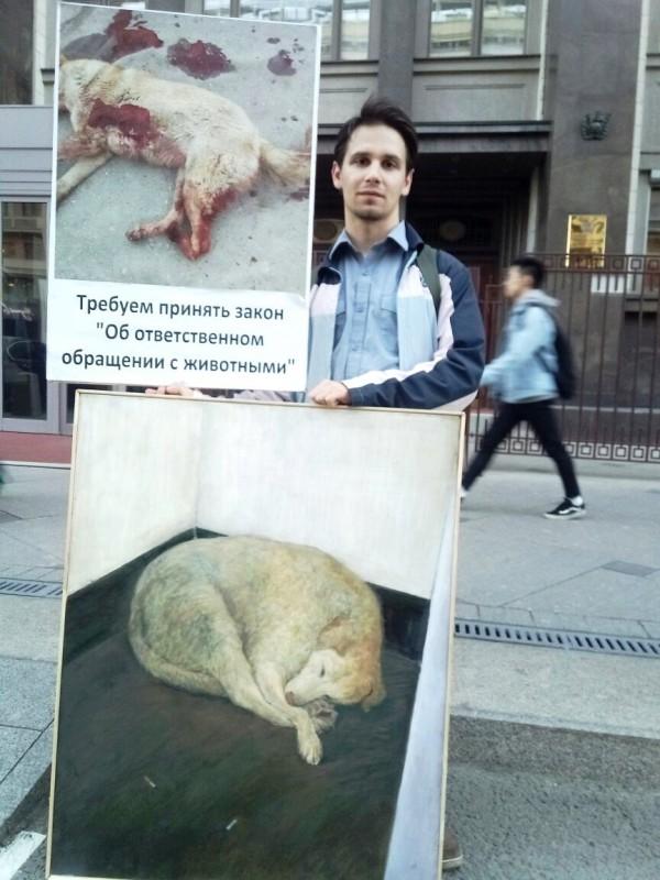 """закон """"Об ответственном обращении с животными"""""""