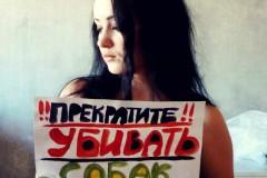 Интернет-обращение к Азербайджану