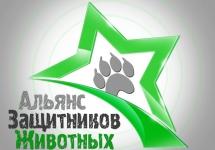 3D-Star-Logo