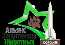 3D-Star-Logo_Korolyov_png