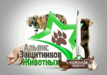 3D-Star-Logo_Korolyov_animals