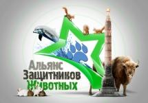 3D-Star-Logo_Minsk.jpg