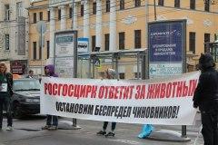 """Пикет """"Росгосцирк ответит за животных"""" 30.04.2013"""
