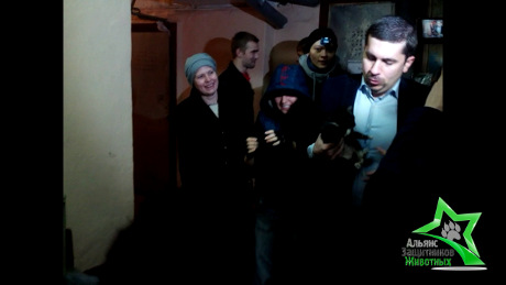 Освобождение замурованных в подвале кошек – 27.04.2013