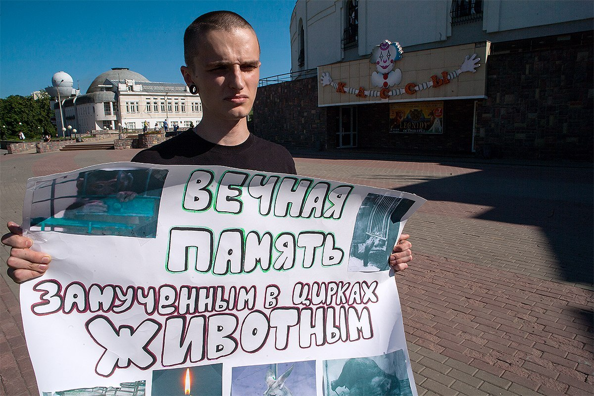 Пикет против цирков с животными в Нижнем Новгороде – 30.06.2013