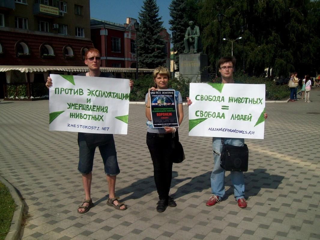 Мы все Земляне – Воронеж 24.08.2013