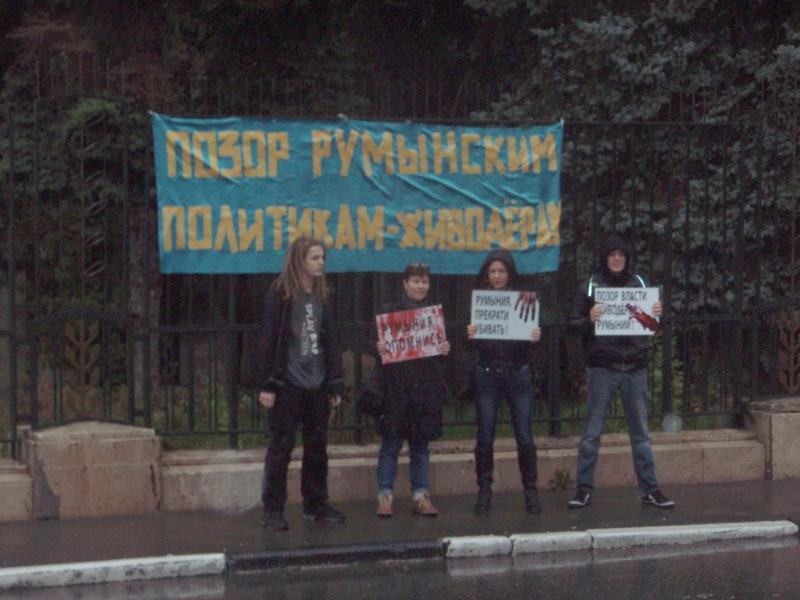 """""""Позор румынским политикам-живодерам"""" – 15.09.2013"""