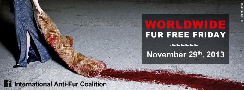 Worldwide Fur Free Friday
