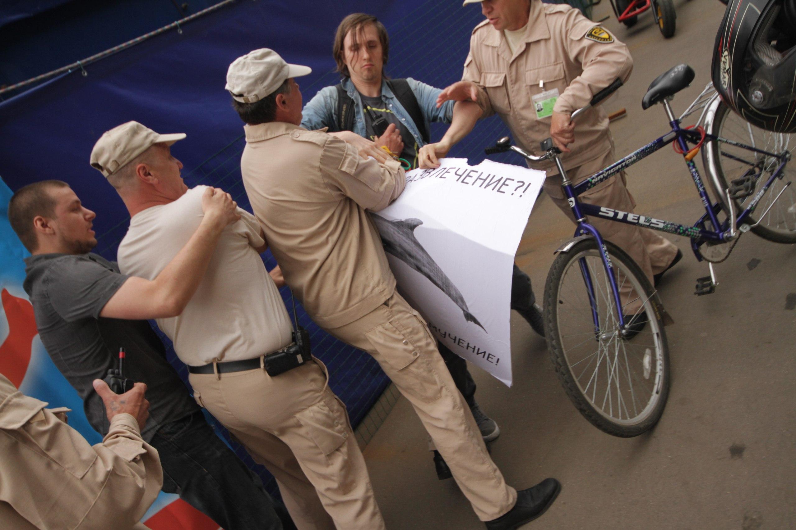 Борьба за одиночный пикет у дельфинария – 20.06.2015