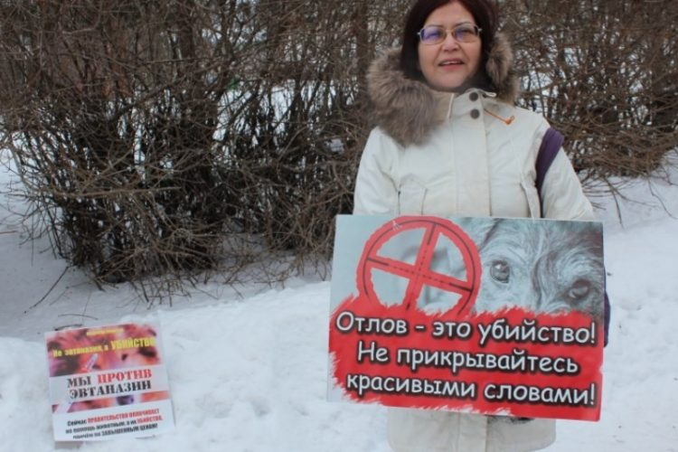 Митинг и сбор подписей за гуманный отлов в Архангельске — 24.02.2018