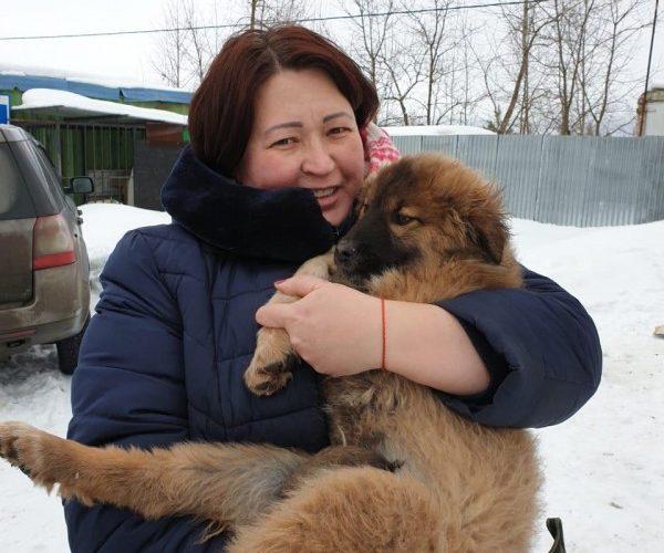 История спасения животных, брошенных на подмосковной трассе — 17.02.2019