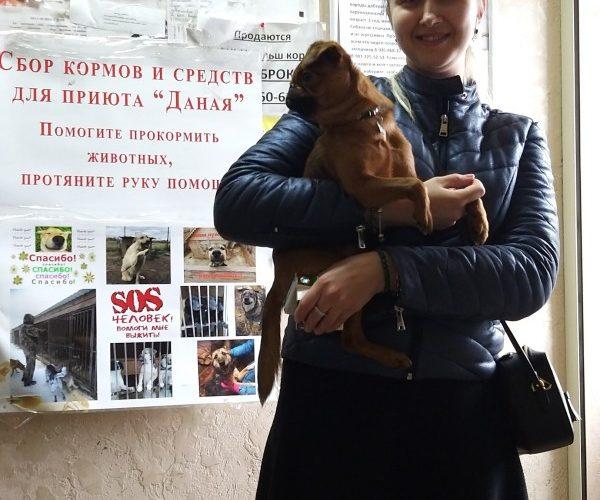 """Акция в помощь приюту """"Даная"""" в Дмитрове — 23.03.2019"""