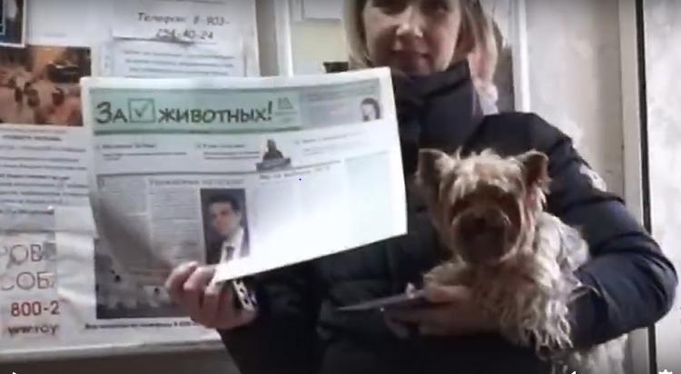 Акция в День защиты животных в Дмитрове — 04.10.2019
