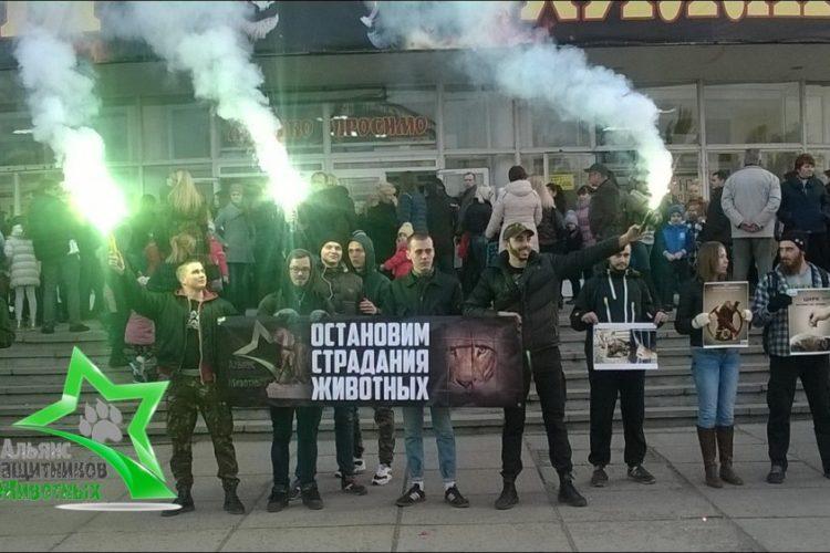 Акция за цирк без животных в Кривом Роге — 01.11.2015