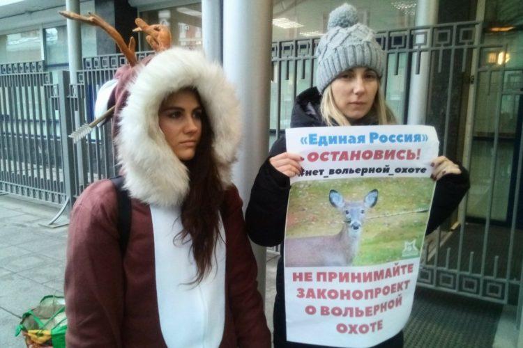 Пикеты против легализации вольерной охоты — 16-17.01.2020