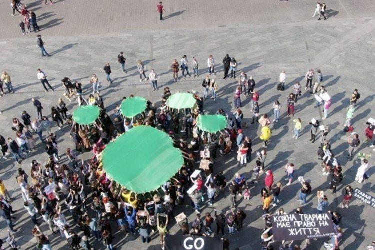 Всеукраинский митинг в защиту животных – 04.10.2020
