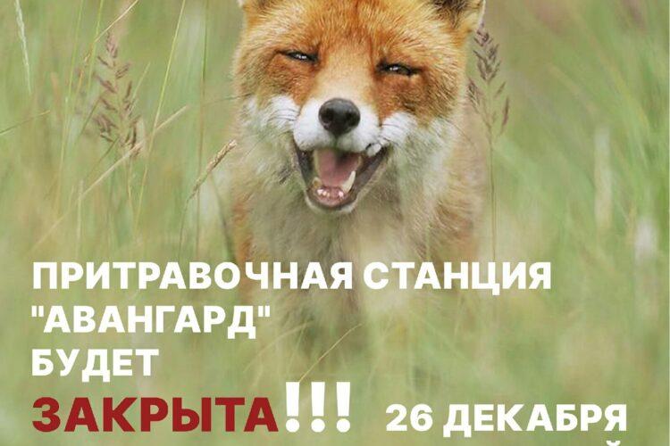 "Притравочная станция ""Авангард"" будет закрыта – 23.12.2020"