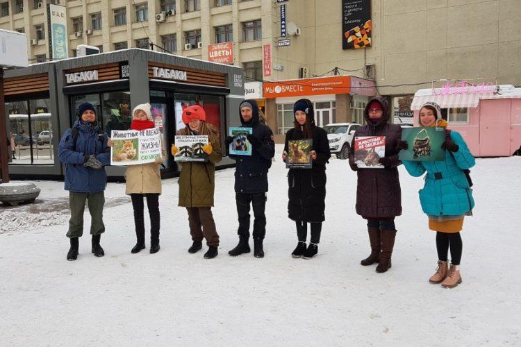 Антимеховая акция в Екатеринбурге — 24.11.2018