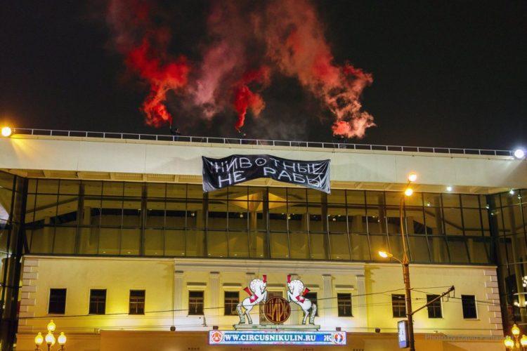 Акция на крыше цирка Никулина — 18.11.2018
