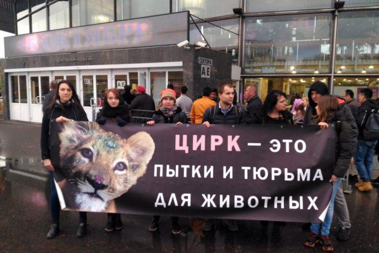 За цирк без животных – 14.10.2017