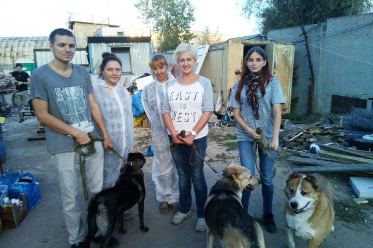 Поездка в Бескудниковский приют — 15.09.2018