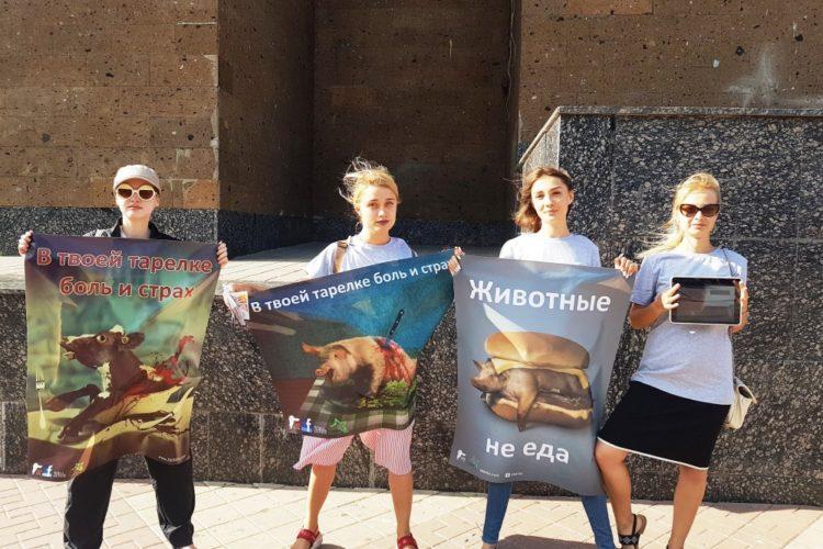 Пикет в Ростове-на-Дону в Международный день защиты бездомных животных — 18.08.2018