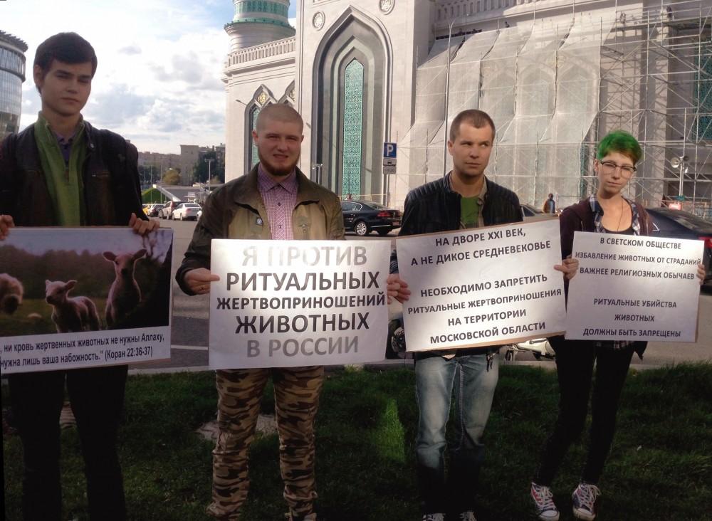 Пикеты за запрет религиозных жертвоприношений животных – 06.09.2016
