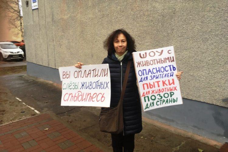 Пикет против шапито в Северодвинске — 05.11.2018