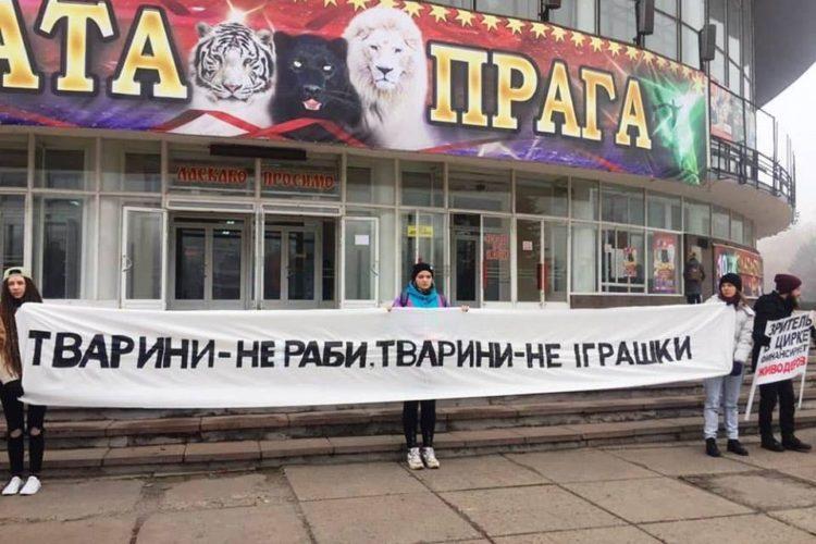 Пикет возле цирка в Кривом Роге — 10.11.2018