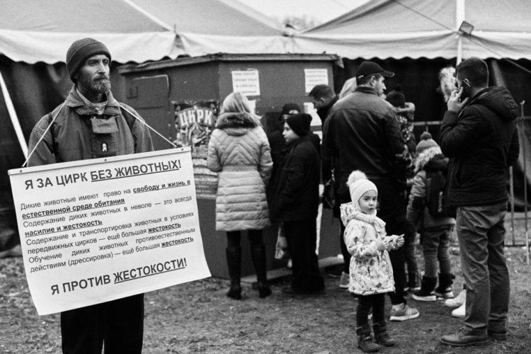 Пикетирование у цирка в Бендерах — 09.12.2018